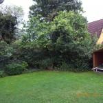 Rund ums Haus - Gartenansicht 2012